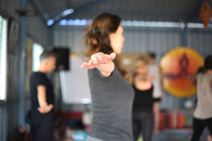 yoga teacher training in The Netherlands